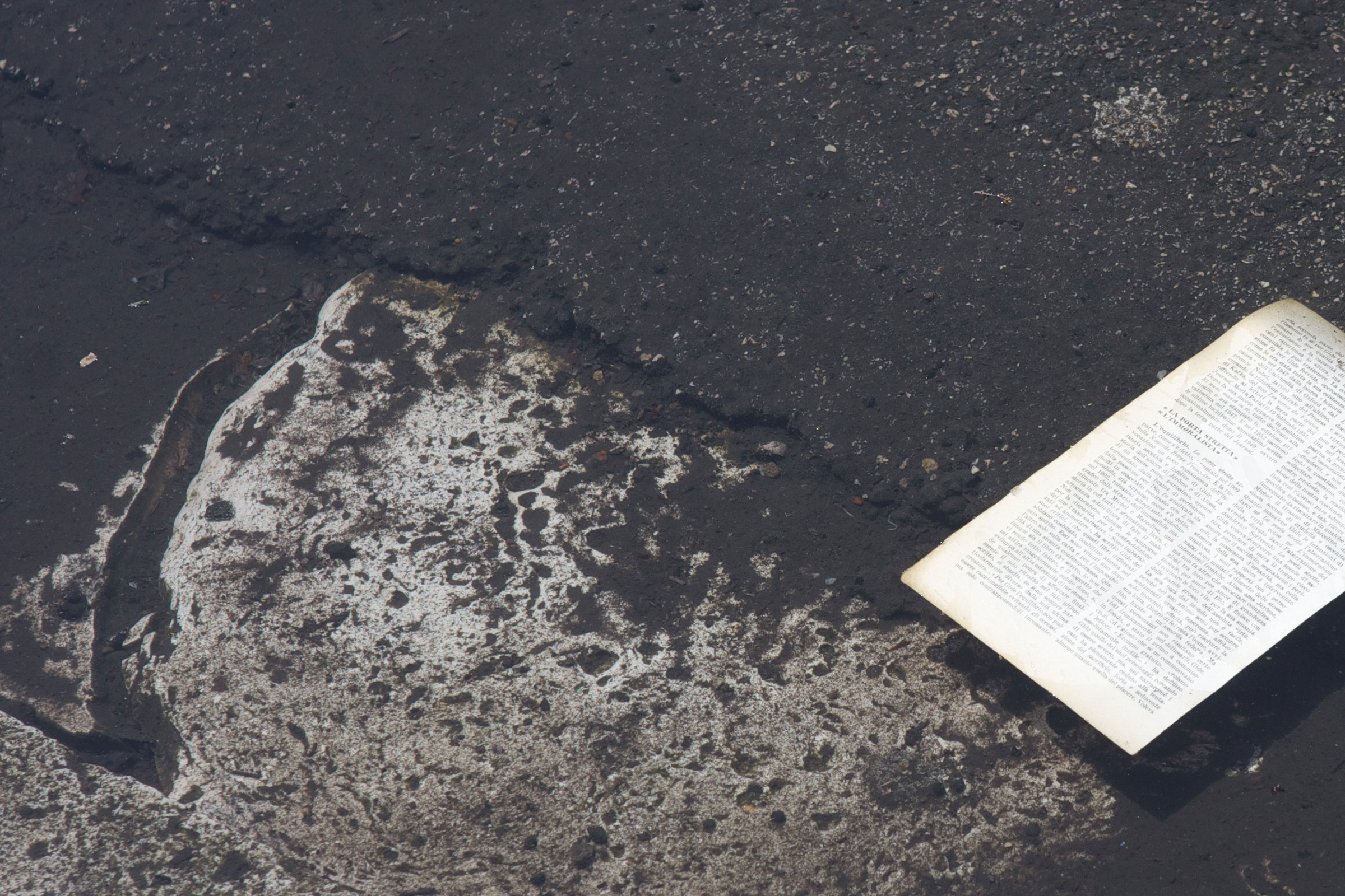paper in a puddle