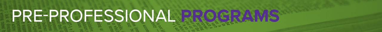 preofessional header