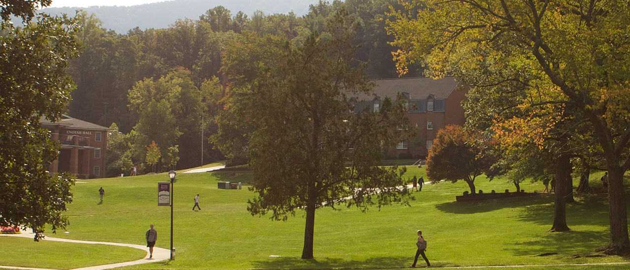 yhc campus tree