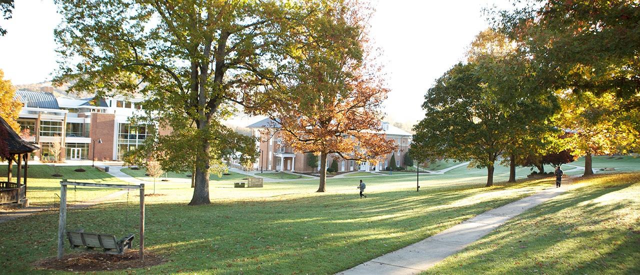 yhc campus lawn
