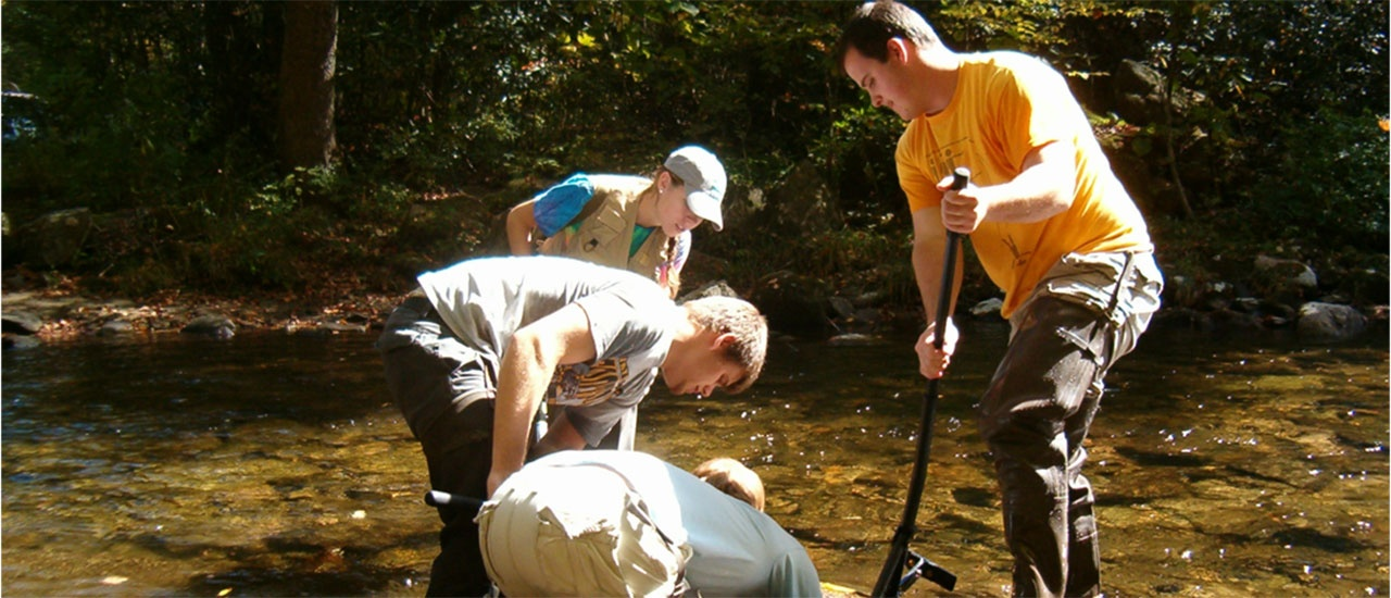 students working in creek