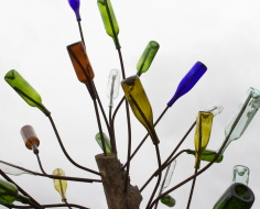 glass bottles on tree branches